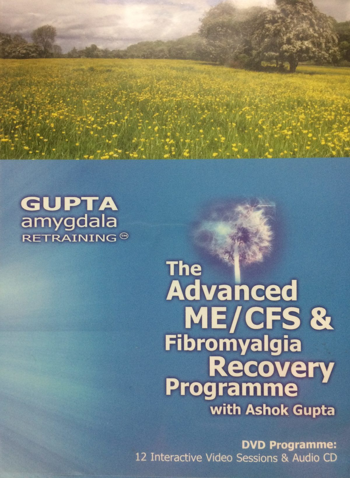 Where I'm At With Gupta's Amygdala Retraining Program