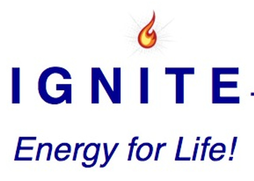 Emotional Intelligence Webinar IGNITE: Energy for Life!